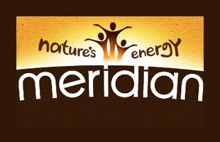 work-meridian